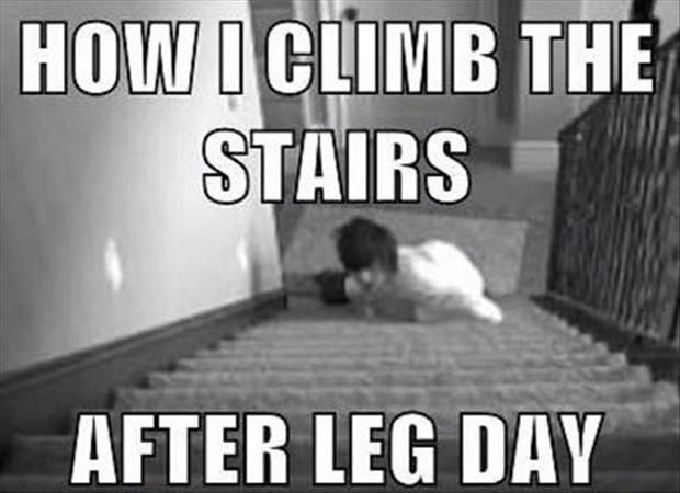 Leg Day Meme Funny : Dump a day meanwhile after leg day pics daily dose of