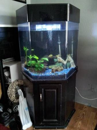 55 Gal Hexagon Fish Tank Acrylic With Black Stand Comes Complete Filter