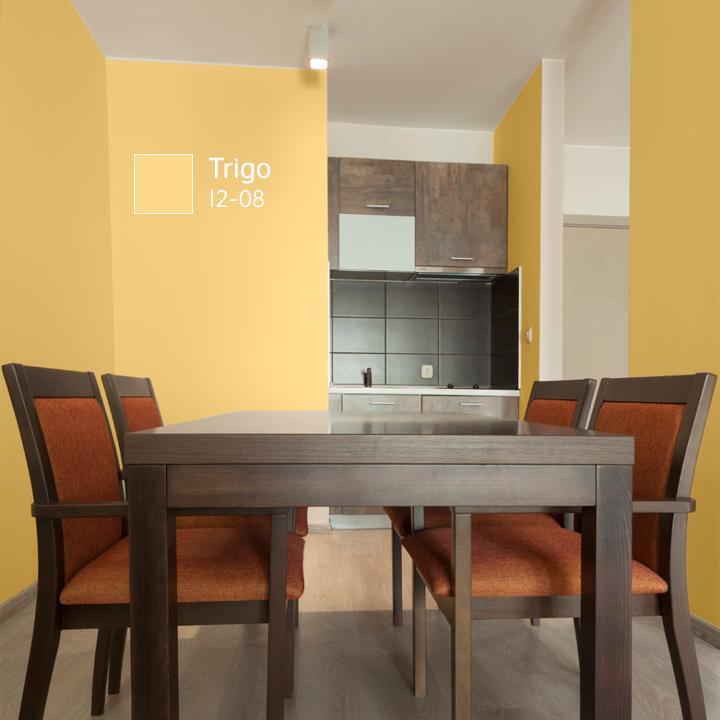 Haz que los colores del espacio combinen con los de tus for Colores de pintura para sala