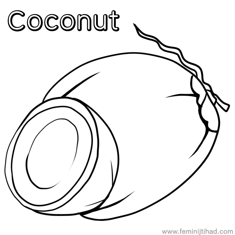 Coconut Coloring Pages Printable Free Coloring Sheets Coloring Pages Animal Coloring Pages Free Coloring Sheets