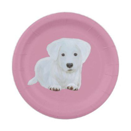 Cute baby happy puppy white dog paper plate - baby birthday sweet gift idea special customize  sc 1 st  Pinterest & Cute baby happy puppy white dog paper plate - baby birthday sweet ...