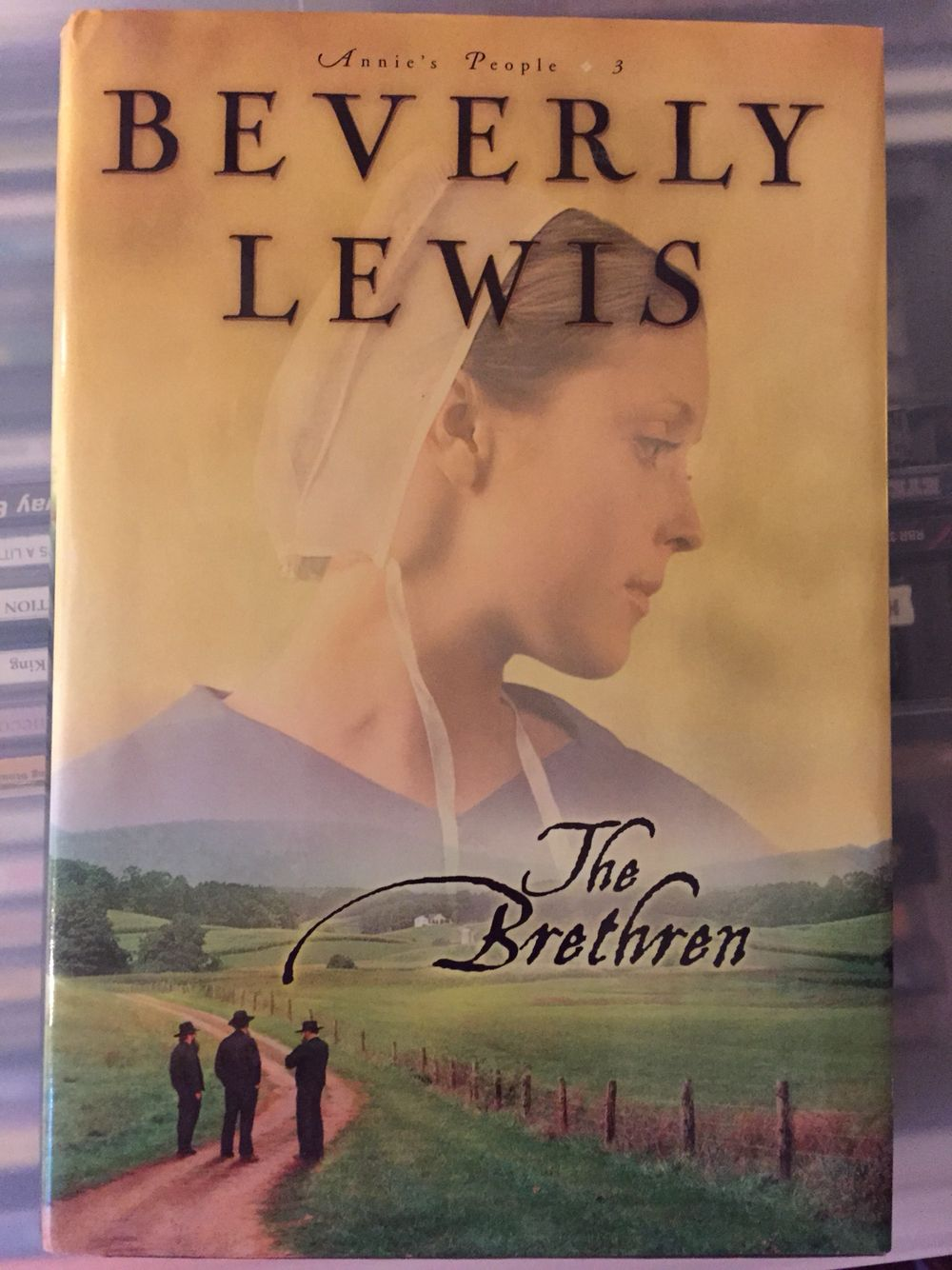 HAVE - The Brethren by Beverly Lewis - Annie's People #3