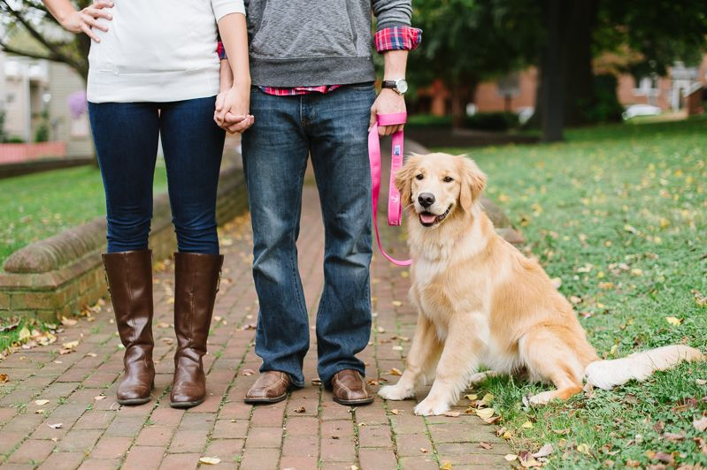 Engagement Pictures With Your Dog Golden Retriever Engagement