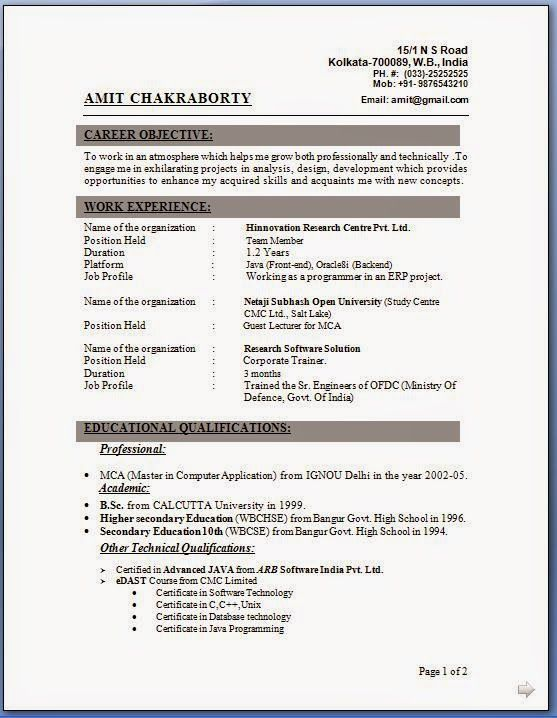 how to do resume for job Sample Template Example ofExcellent CV