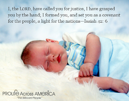pro life bible verses