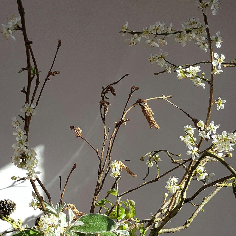 Delicate damson blossom Ikebana style