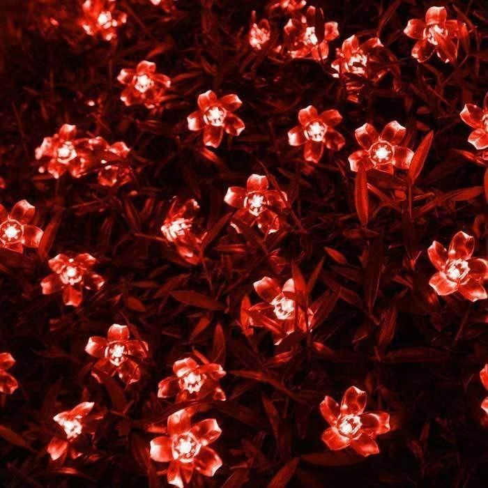 6W Red Light 100-LED Flower Starry Light Strip (33ft / AC 220V