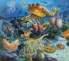 Cambrian Period Posters - Underwater Paleozoic Landscape Poster by Publiphoto
