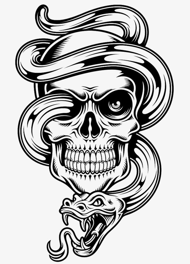 Vector Venom Skull Creative Skull Snake Png And Vector With Transparent Background For Free Download Skull Stencil Silhouette Clip Art Skull Tattoo Design