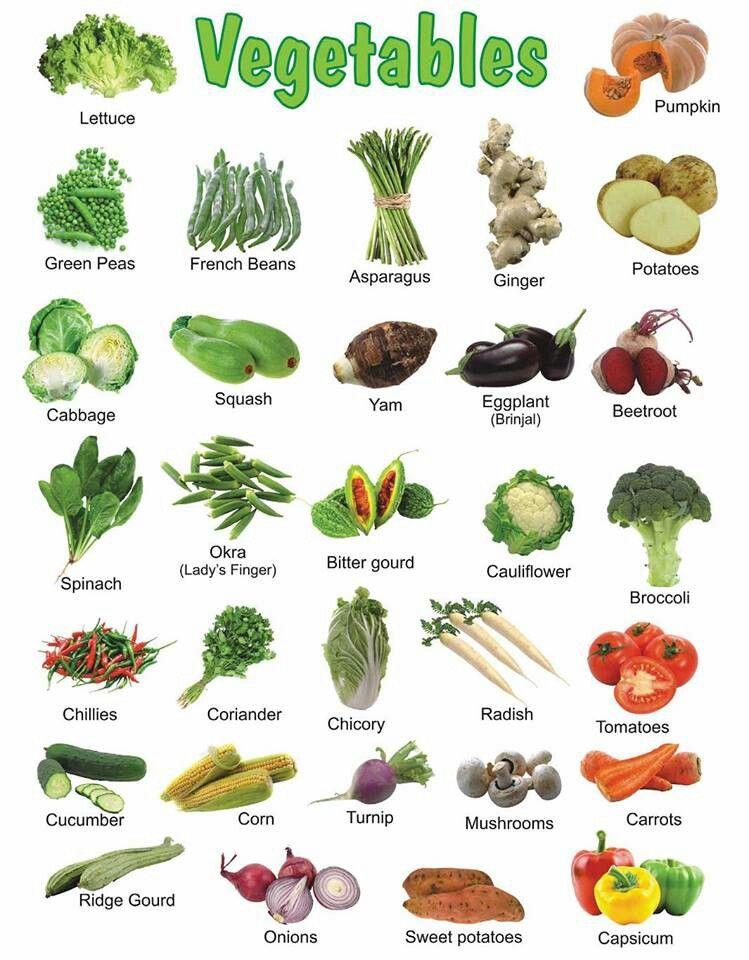 Tipos De Vegetales Buscar Con Google Name Of Vegetables Vegetables List Of Vegetables