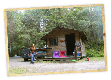 Hendy Woods State Park Is An Absolute Gem In Mendocino County With 92  Campsites And Four