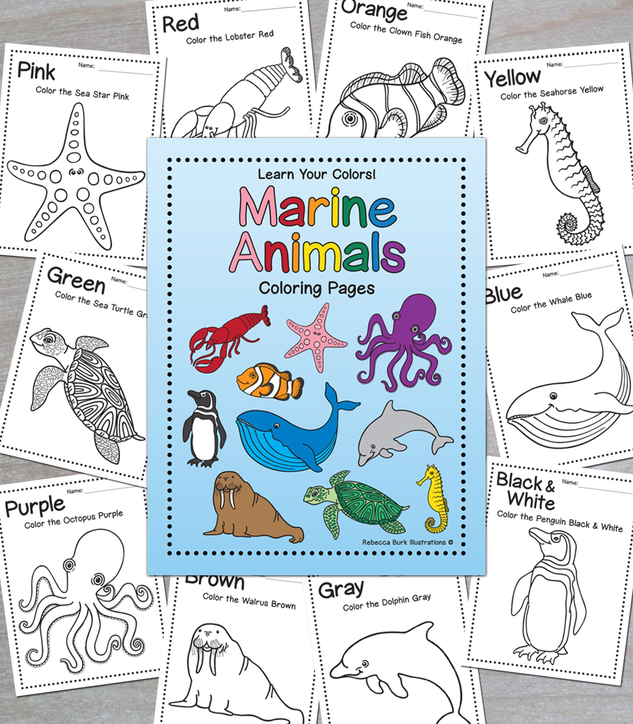 Learning Colors Marine Animals Coloring Pages
