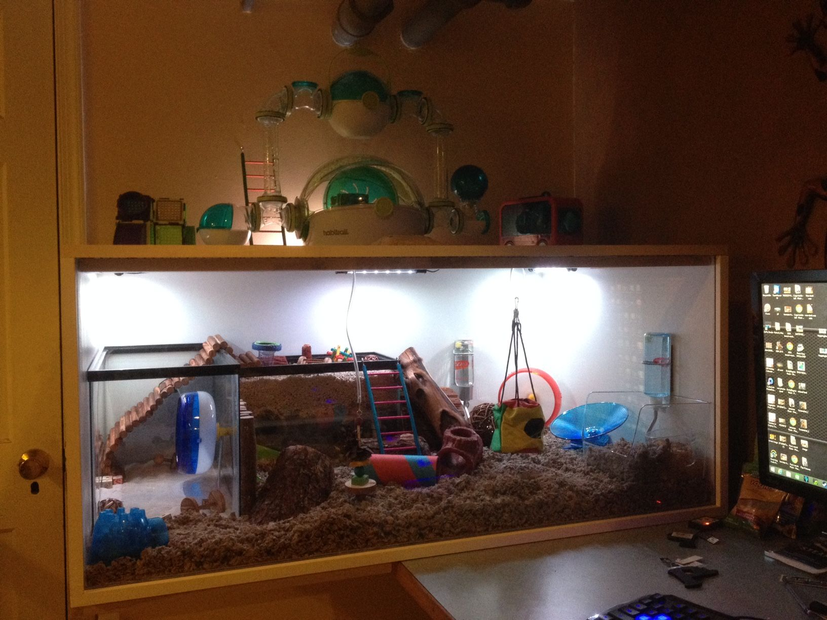 Diy hamster cage with multi color led lighting sand play for How to make a diy hamster cage