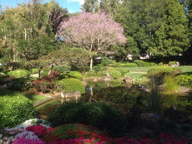 50617be8d3b338a2a970a54bdf1ccb69 - Mt Coot Tha Gardens Opening Hours
