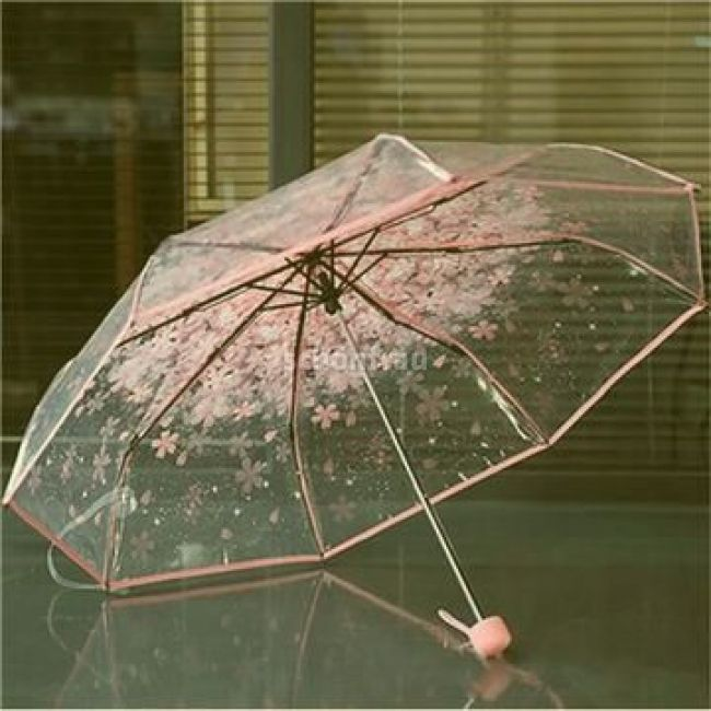 Sakura Umbrella | Three fold umbrella in 2019 | Transparent umbrella, Cute umbrellas, Clear umbrella    1pc three Fold Umbrella Women Transparent Clear Cherry Blossom Mushroom Apollo Sakura folding Sunshade Rain Umbrella Features: Exquisite handle through dull polish, extremely comfortable feel for.. #cuteumbrellas