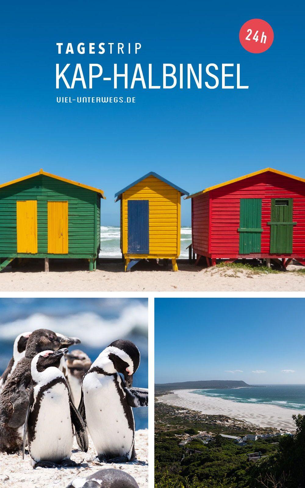 Kap der Guten Hoffung & Kap-Halbinsel an einem Tag