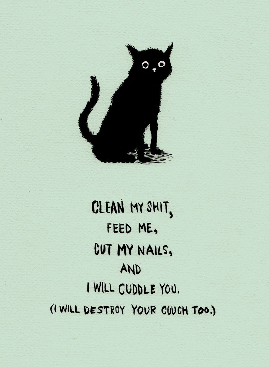 Clean my shitud by ghosttthead sounds about right haha girly things
