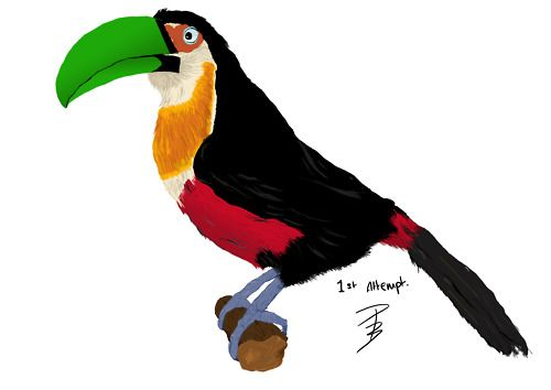 First ever attempt of drawing with a Wacom Bamboo tablet.