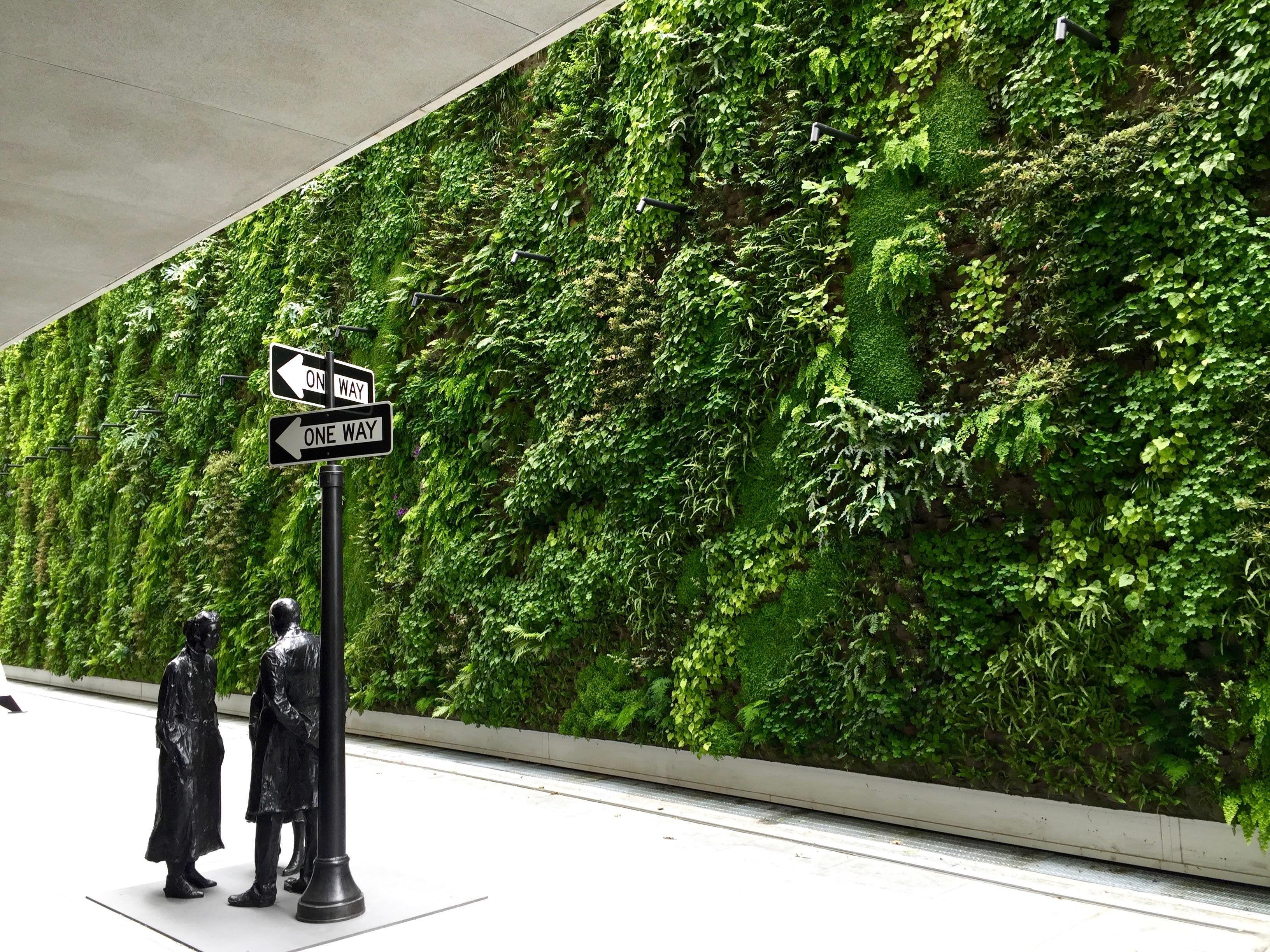 Living wall vertical garden sfmoma green wall snohetta for Vertical green wall