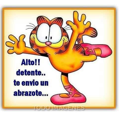 Abrazo Dibujos Animados Garfield Besos Y Abrazos Garfield Y Sus Amigos