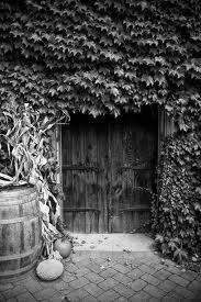 Google Image Result for http://www.keithdotson.com/blog/wp-content/uploads/2010/10/IMG_0552-Wine-Cellar-Doors-12-x-18.jpg