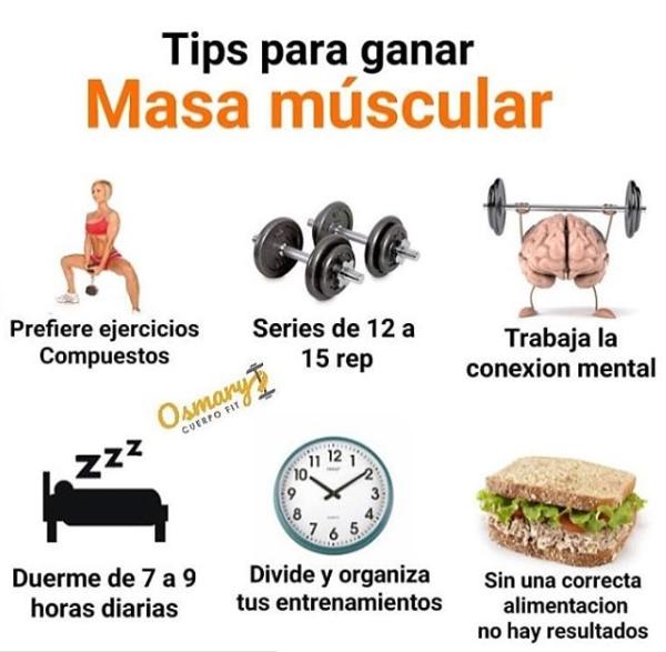 rutina gestation engrosar de masa muscular