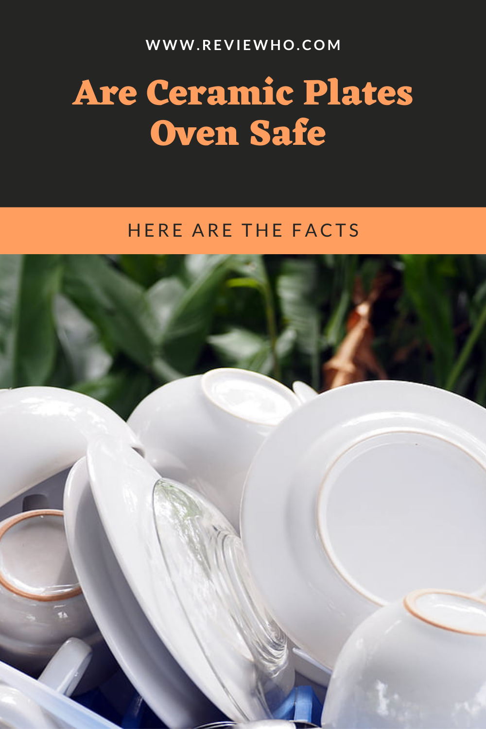 Are Ceramic Plates Oven Safe Here Are The Facts Reviewho In 2020 Ceramic Plates Oven Safe Plates