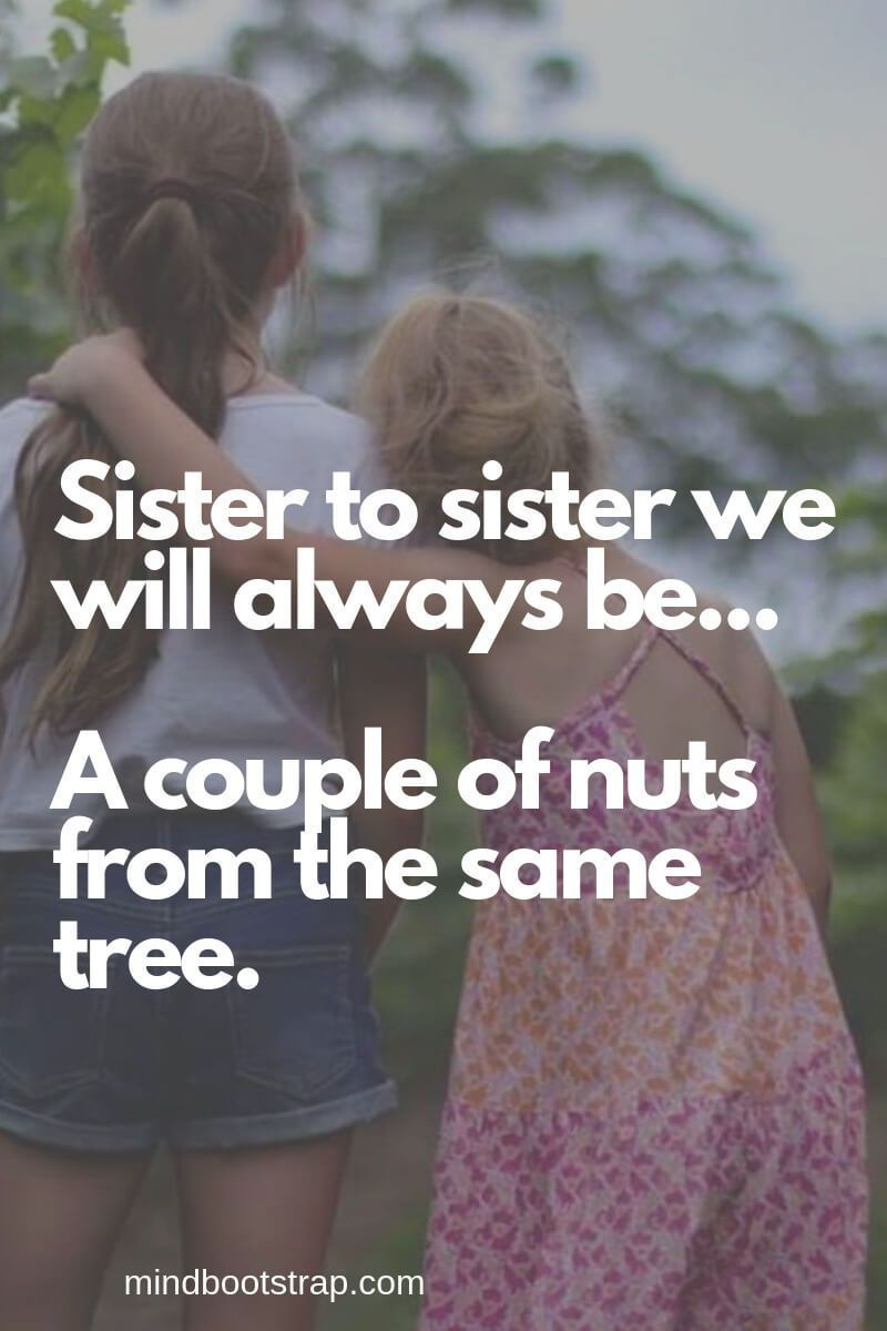 75+ Inspiring Sister Quotes And Sayings | Sister Quotes