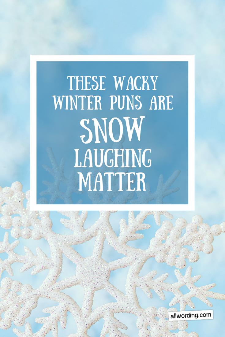 These Wacky Winter Puns Are Snow Laughing Matter | Winter ...