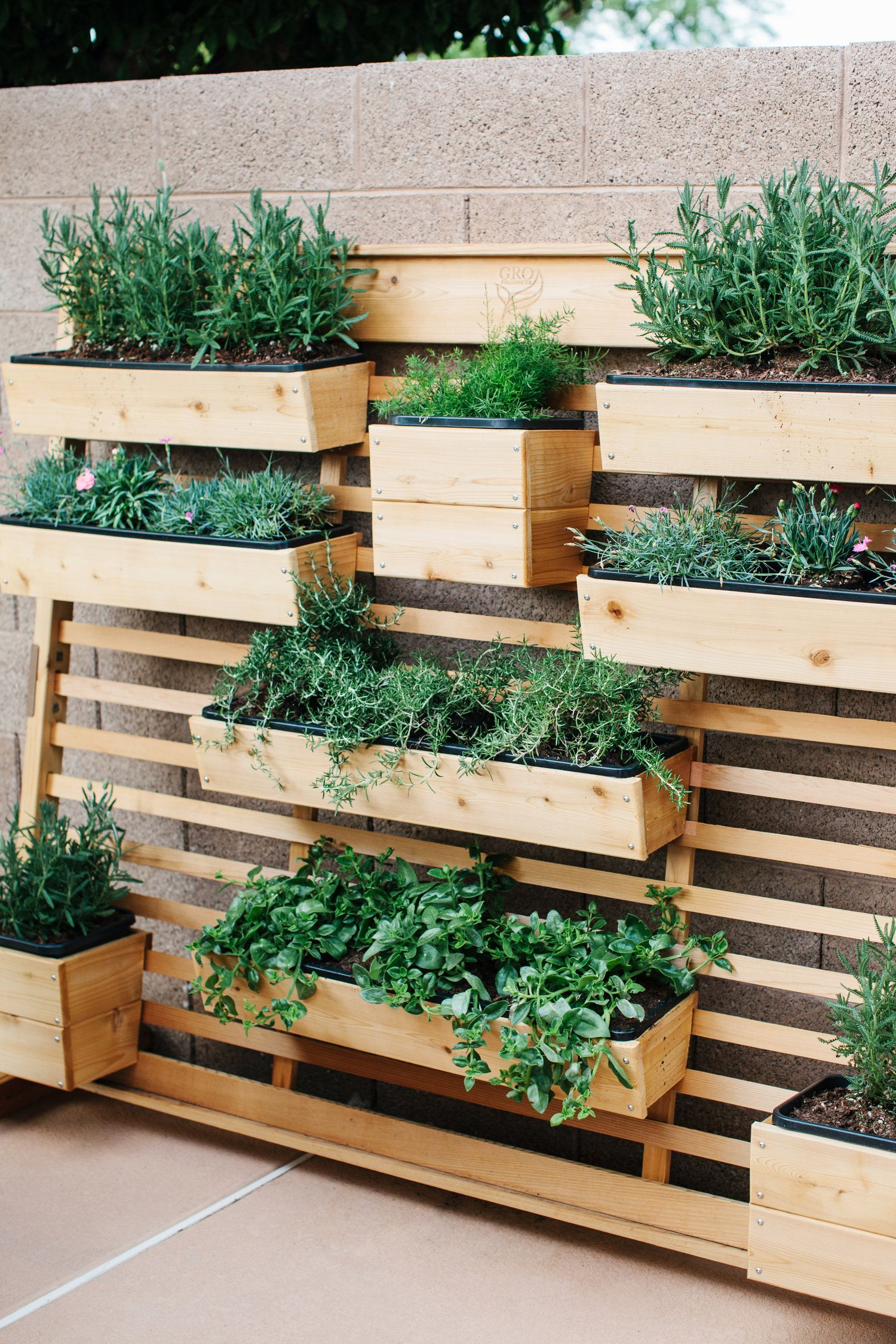 Arizona outdoor entertaining living walls cinder block Herb garden wall ideas