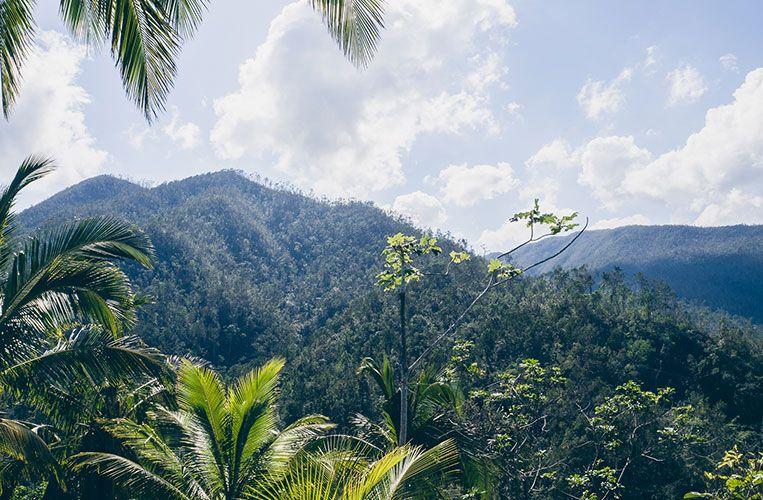 Parque Nacional Alejandro de Humboldt, Baracoa, Kuba