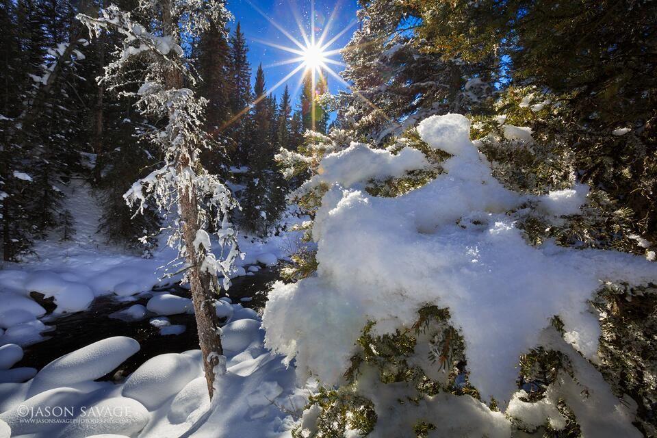 the beauty of winter in montana jason savage photography yellowstone yellowstone national park beautiful photography pinterest