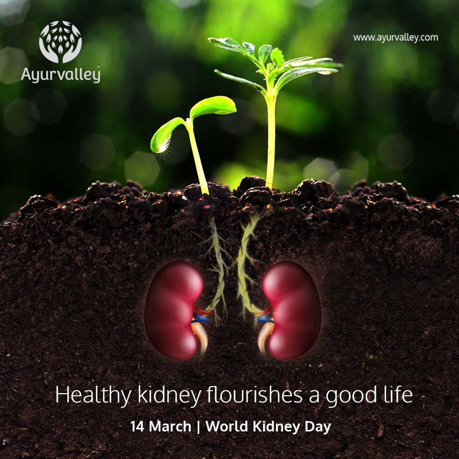 Home Kidney Transplant Kidney Disease Awareness Ayurvedic Treatment