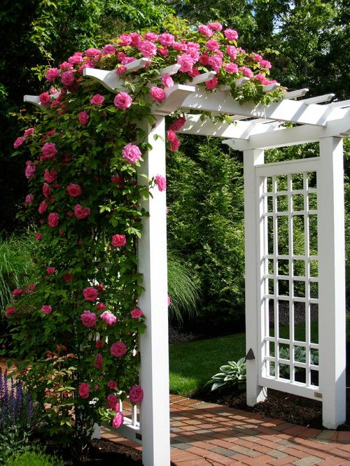 16 Great Ways To Add Curb Appeal With Images Garden Arches