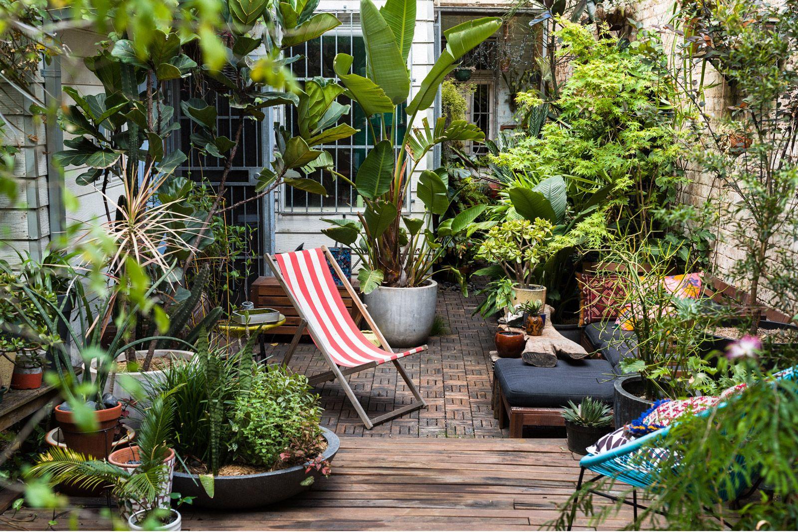 Plant / Life: David Whitworth   Small garden design ...