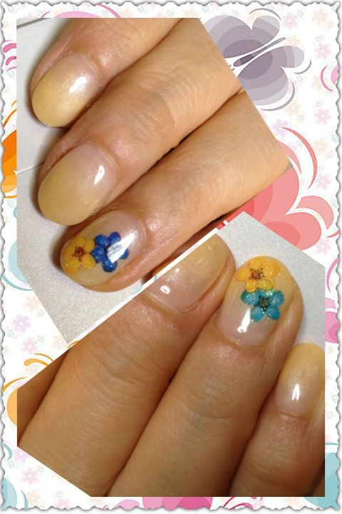 Nail Reuse Natural Nails 1 Paint A Clear Coat 2 Place Small