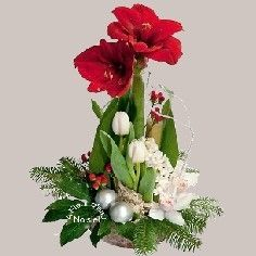 a fleur d eau fleuriste noisiel 77 livraison fleurs fleurs no l jour de l 39 an bouquets. Black Bedroom Furniture Sets. Home Design Ideas