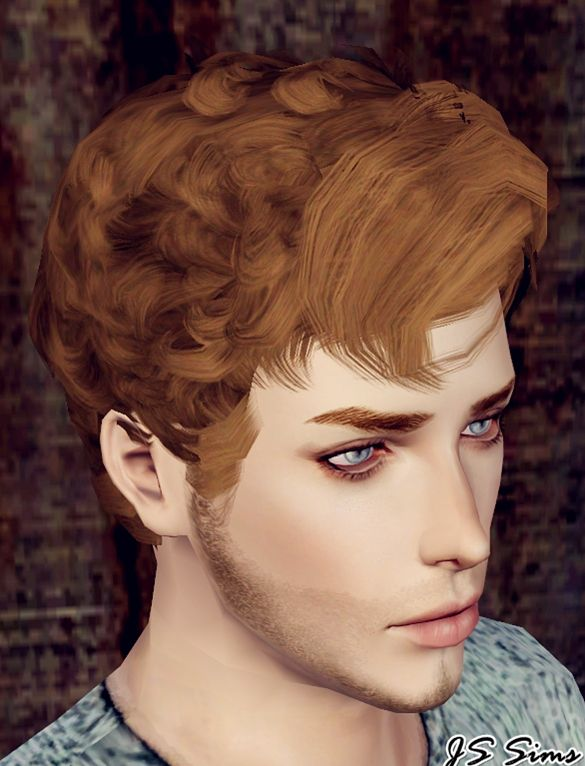 Pin By Suzi Rakoczu On Sims 3 Sims Hair Curly Hair Styles Sims 3 Male Hair