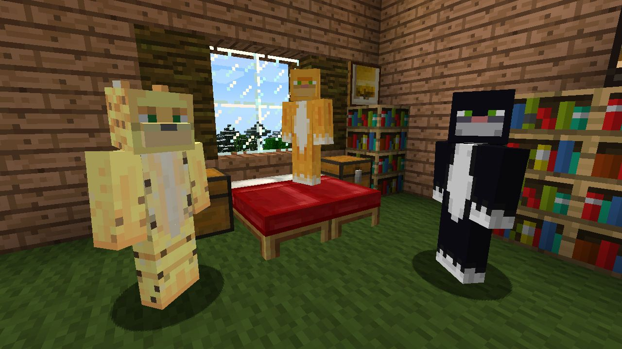 Skin Pack 5 Cats Minecraft pictures, Cat party, Cat skin