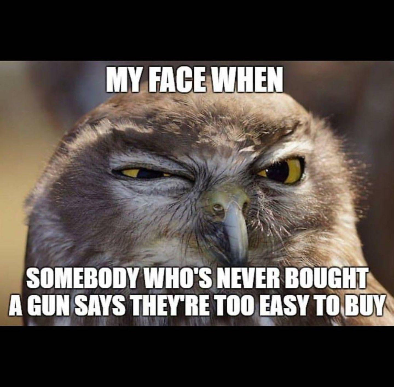 Funny Memes: Gun Owner Humor. Funny Meme For Firearm Lovers.