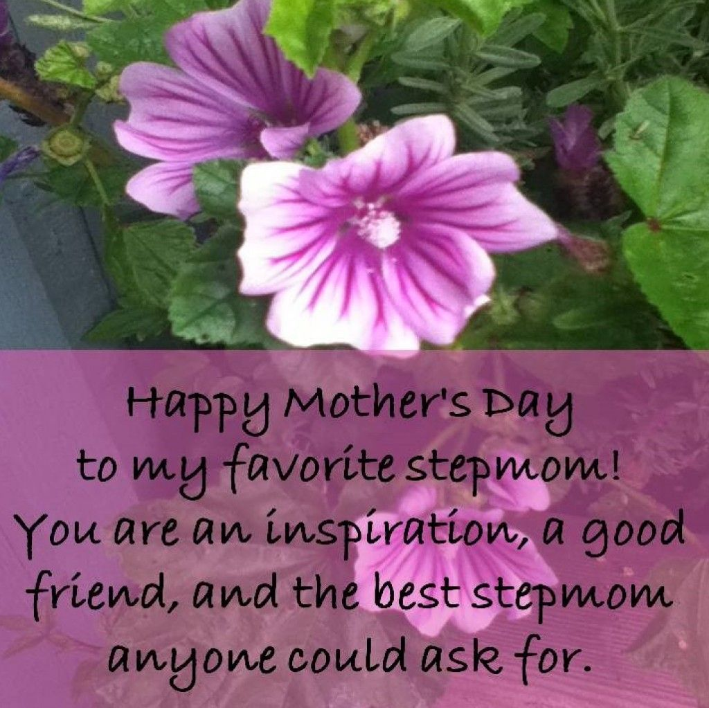 Mother's Day Quotes From Step Son | Mother's Day Quotes From