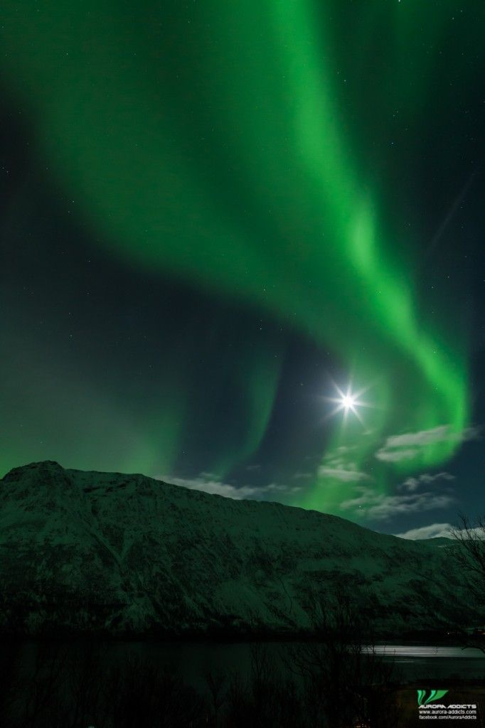 Auroras Over the Lavvu and a Frozen Walk in Northern Norway | Beautiful  scenery pictures, Aurora borealis northern lights, Northern lights