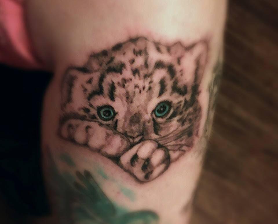 Baby Snow Leopard Tattoo With Blue Eyes Artist Allison Birdy