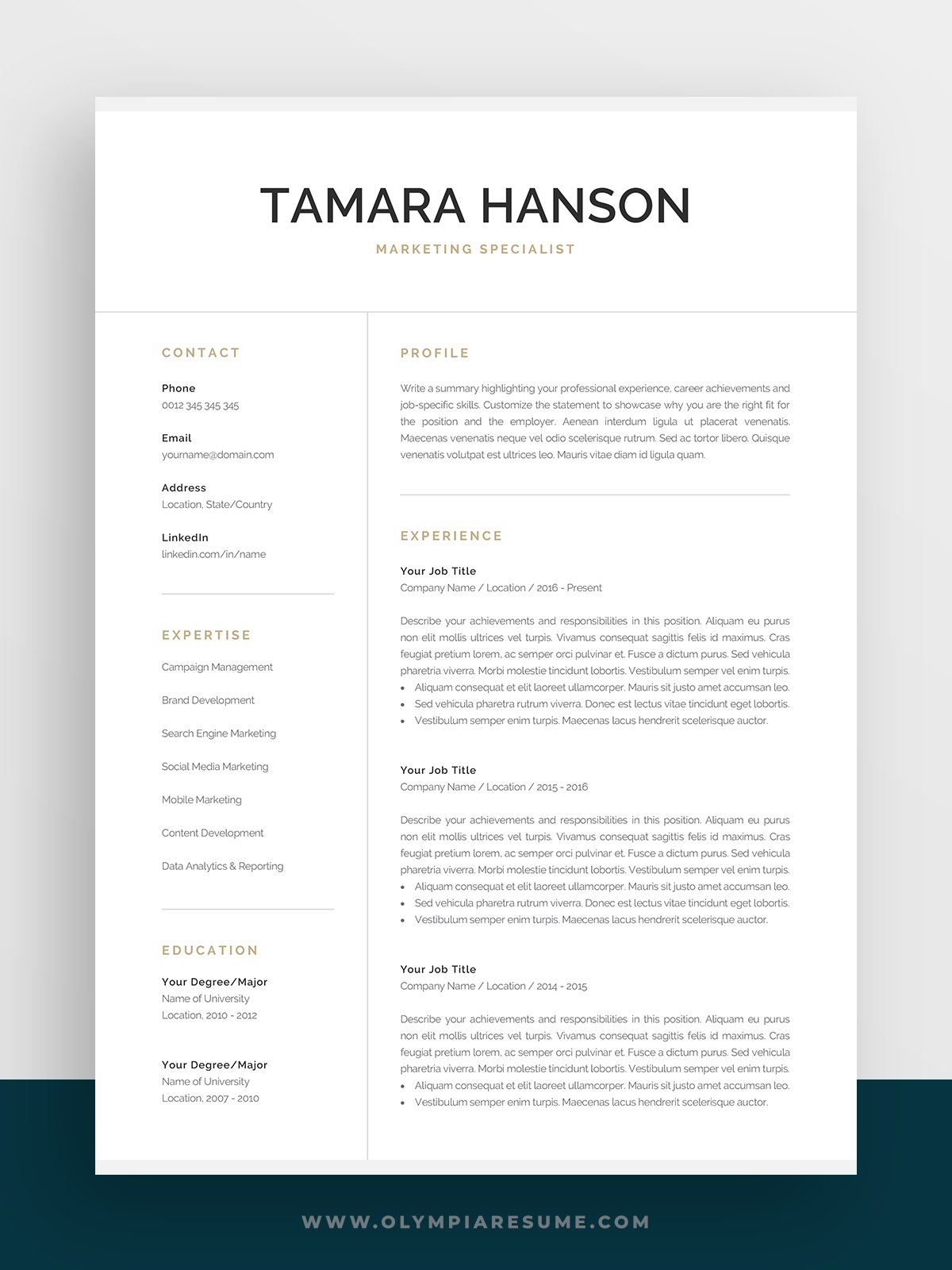 Professional Resume Template For Word Pages Modern Etsy Resume Template Professional Resume Template Marketing Resume