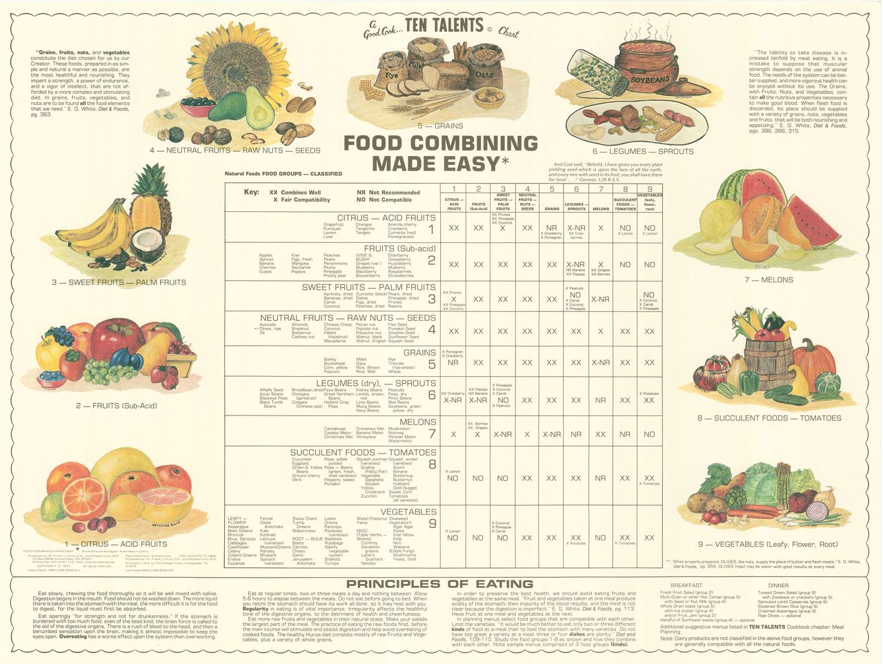 Food combining chart laminated 12x18 food combining chart food food combining chart laminated ten talents cookbook forumfinder Gallery