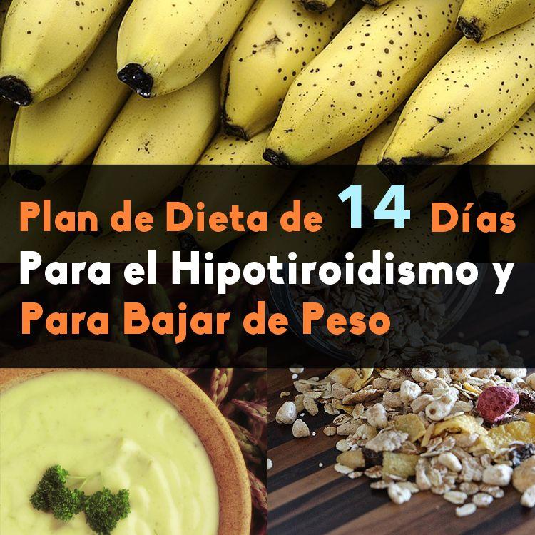 plan de comidas simple y fácil de perder peso