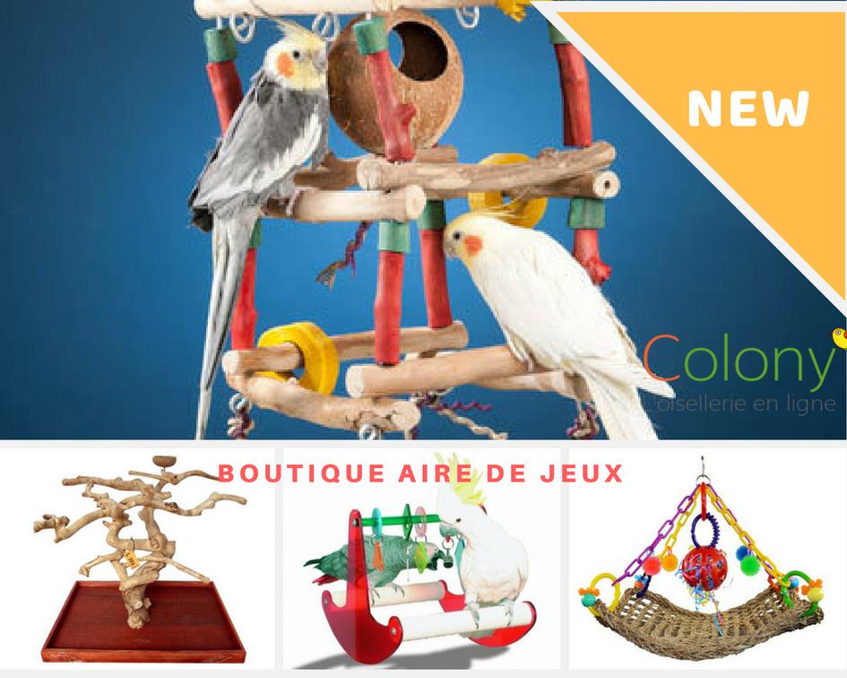 New Sur Colony Perroquet Des Aires De Jeux Qui Raviront Vos Parrots Grande Perruche Et Conures Et Pour Faire Un Aire De Jeux Grande Perruche Perroquet