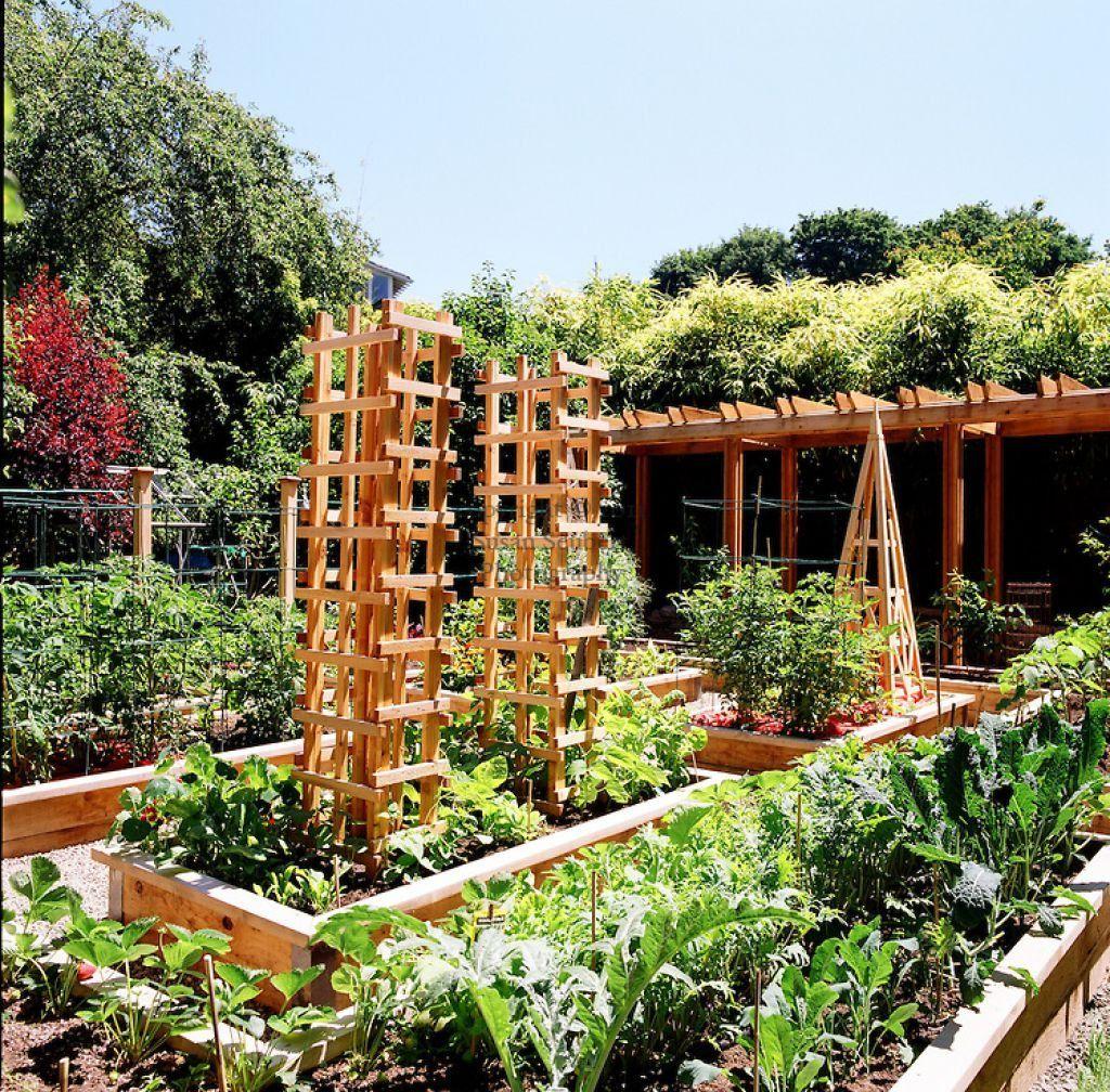 5 Vertical Vegetable Garden Ideas For Beginners: Planting A Vegetable Garden