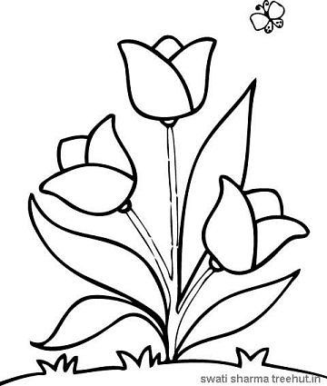 Flowers Coloring Pages Flower Coloring Pages Flower Drawing Coloring Pages