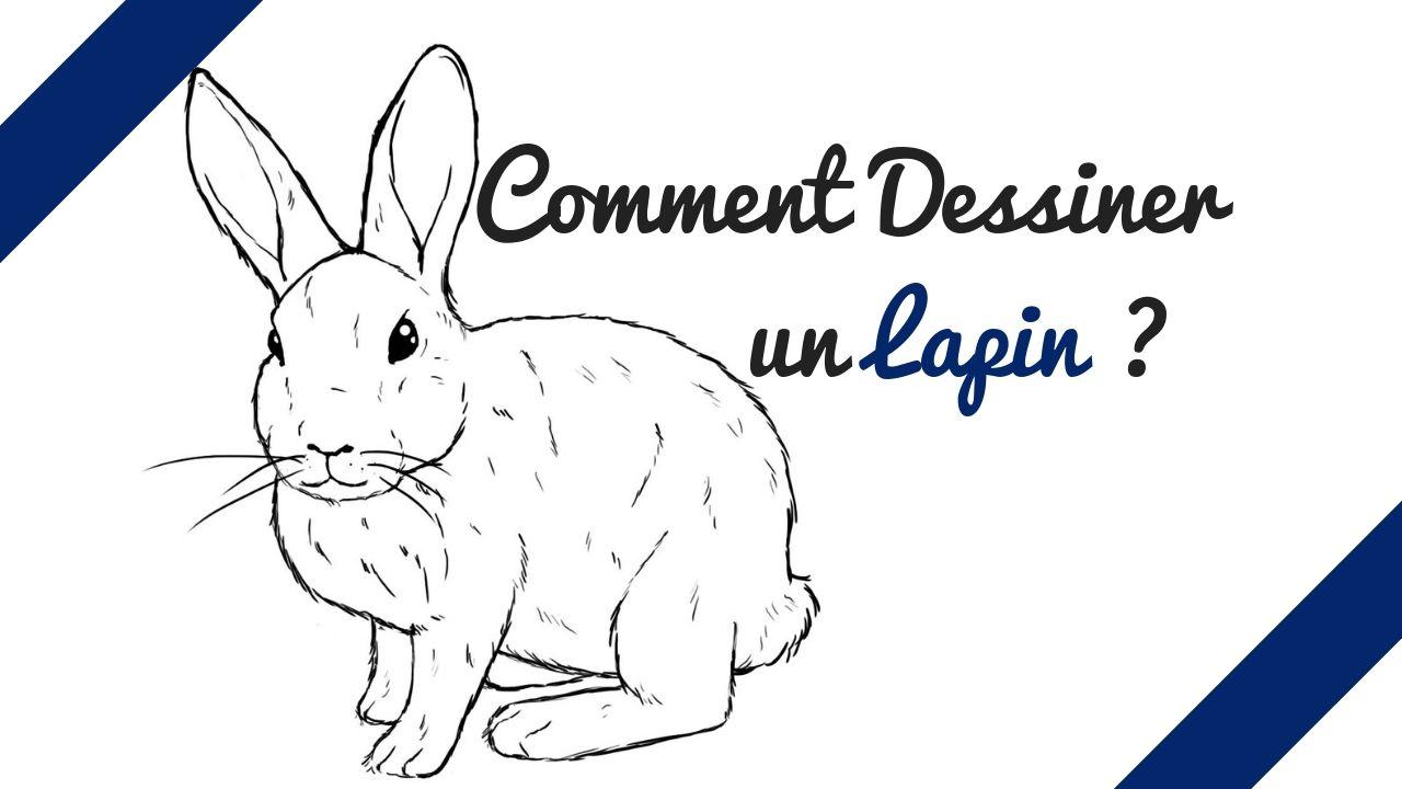 Apprenez Comment Dessiner Un Lapin Facilement Comment Dessiner Un Lapin Dessin Lapin Comment Dessiner